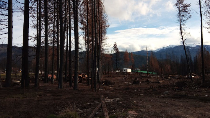 lago-puelo:-llegaron-para-ayudar-tras-los-incendios-y-ahora-usurpan-tierras