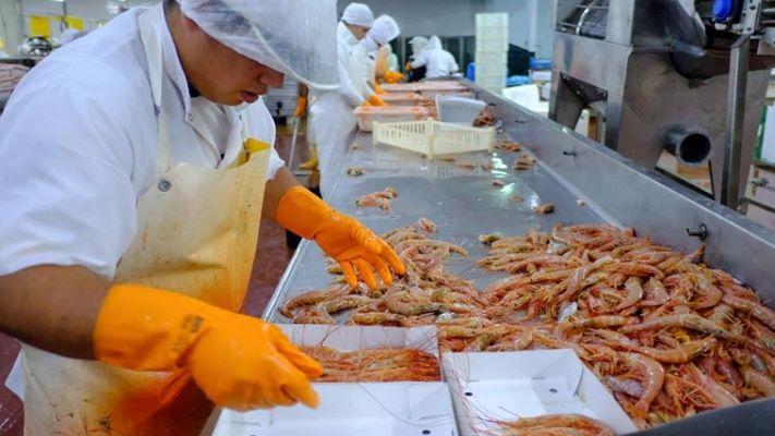 pesqueras-chubutenses-podran-exportar-a-costa-rica